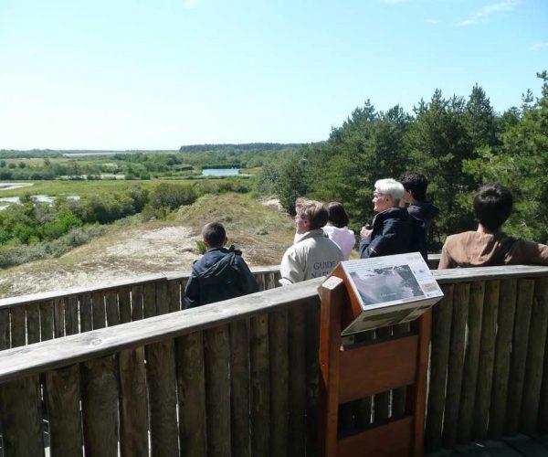 Point d'oberservation au parc ornithologique du Marquenterre en baie de Somme