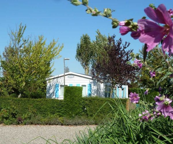 location-chalet-camping-somme