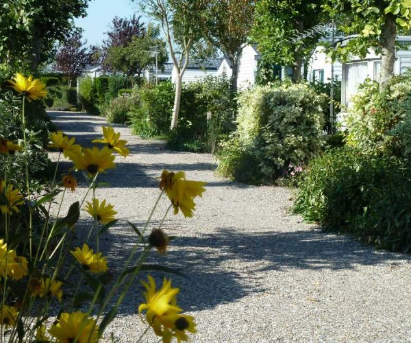 camping-vacances-baie-somme
